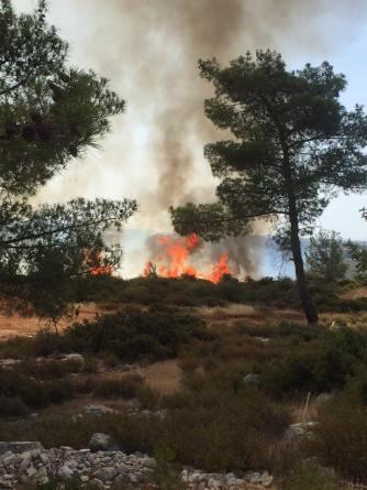 Fire - 19 June